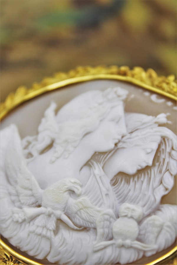 """A very fine Shell Cameo and 18ct Yellow Gold (Marked) """"Cannetille"""" Work Brooch, Circa 1830. - image 1"""