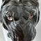 Japanese bronze lion - image 2