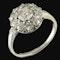 MM6469r  Edwardian platinum diamond cluster ring 1910c - image 1