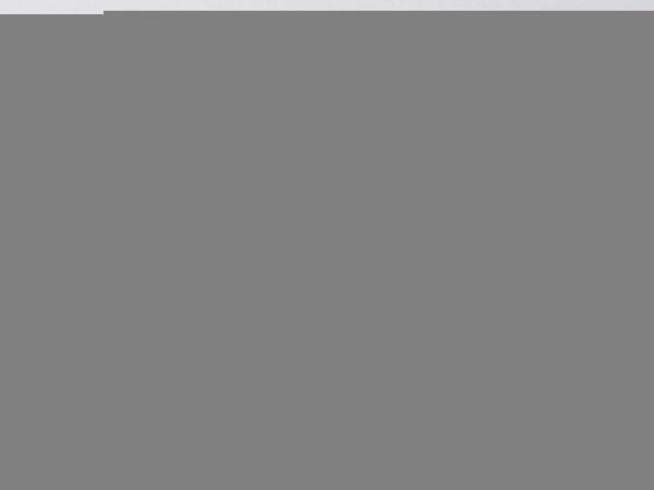 Antique Diamond Cluster Ring  DBGEMS - image 5