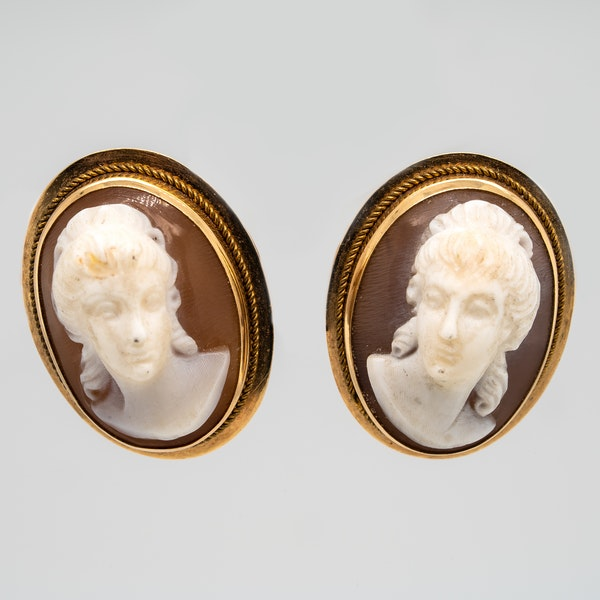 Shell  Cameo earrings in gold - image 1