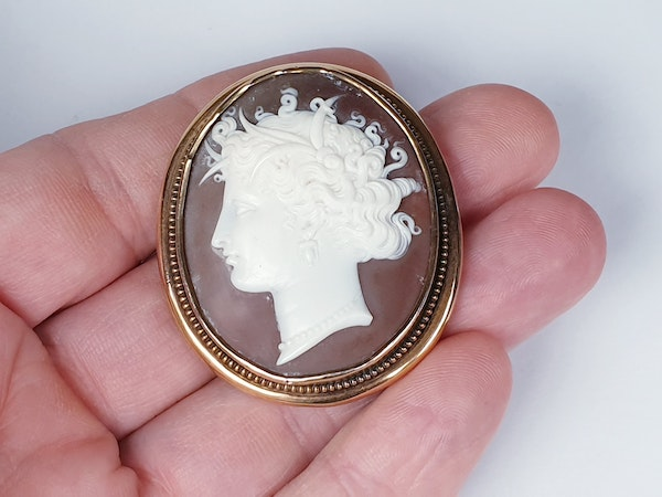 Victorian Shell Cameo Brooch  DBGEMS - image 2