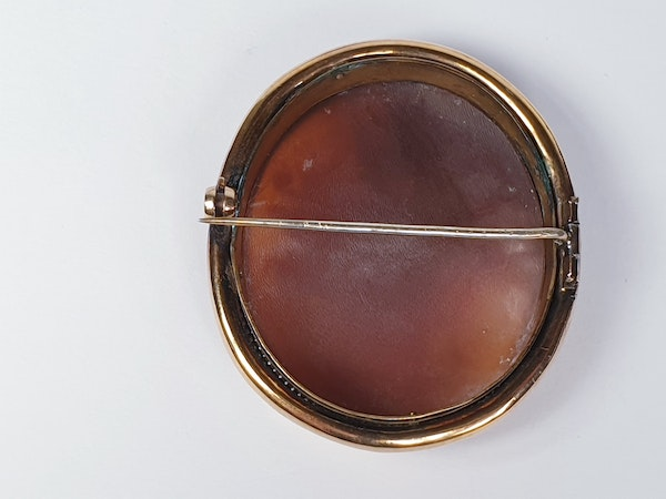Victorian Shell Cameo Brooch  DBGEMS - image 1