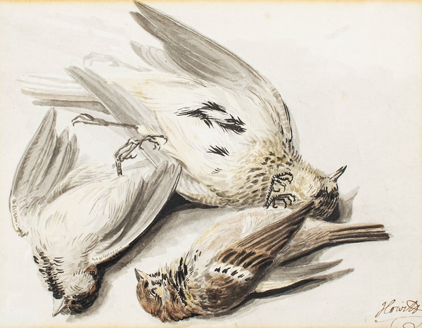 Samuel Howitt Watercolour Circa.1790. Still life study of birds - image 1