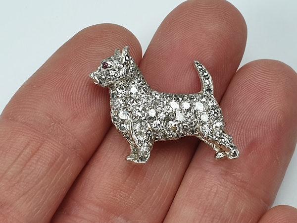 Antique diamond dog brooch  DBGEMS - image 2