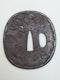 Japanese Meiji Period iron tsuba with peapods - image 2