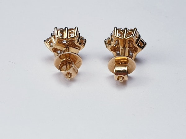 Diamond daisy cluster earrings in 18ct yellow gold SKU 4829  DBGEMS - image 4