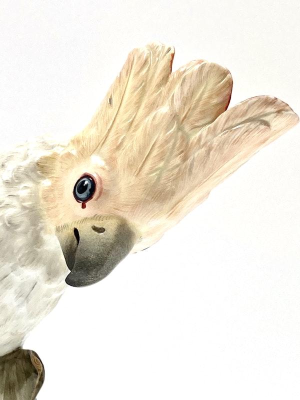 Meissen cockatoo - image 5
