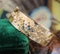 A very fine 18ct Yellow Gold Half Hinged Bangle set with Diamonds, French, Circa 1950 - image 1