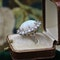 A very fine Opal and Diamond Cluster Ring set in 18ct White Gold, English, Circa 1960 - image 4