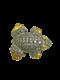 18K white/yellow gold Diamond Brooch - image 1