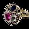 Giardinetti ring - image 1