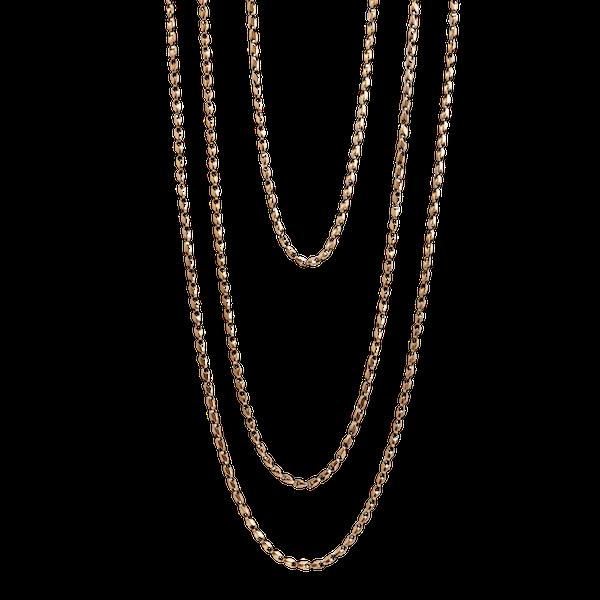 Victorian Longguard chain. Spectrum Antiques - image 1