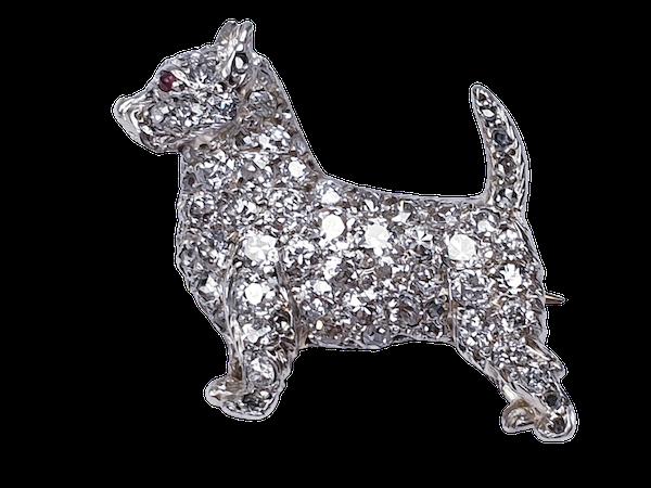Antique diamond dog brooch  DBGEMS - image 1