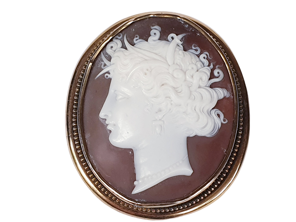 Victorian Shell Cameo Brooch  DBGEMS - image 3
