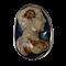Seventeenth century hard stone cameo as a stickpin - image 1