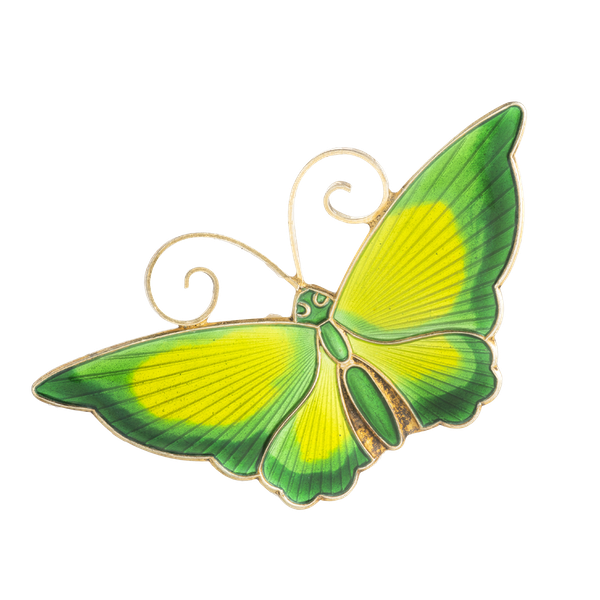 A Green Yellow Butterfly by David Andersen - image 1