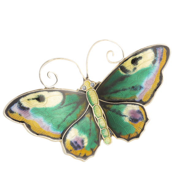 A Brown Yellow Green Butterfly by David Andersen - image 1
